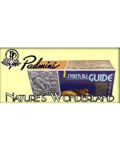 Spiritual Guide Incense Sticks by Padmini