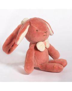 Bunny Stroller Toy - MiYim