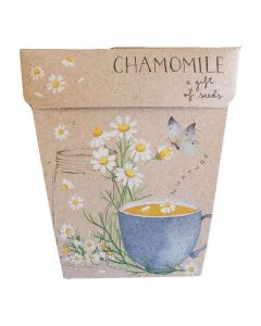 Chamomile Gift of Seeds - Sow 'n Sow