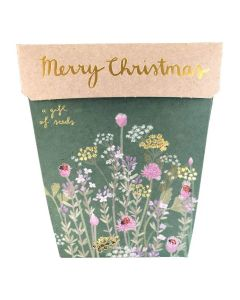 Christmas Gift of Seeds - Sow 'n Sow