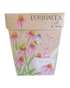 Echincea Gift of Seeds - Sow 'n Sow