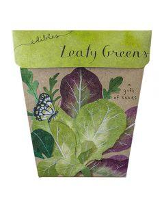 Leafy Greens Gift of Seeds - Sow 'n Sow