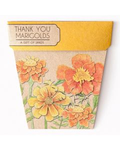 Marigolds Thank You Gift of Seeds - Sow 'n Sow