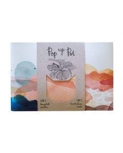 Pop Up Pot - Beach - Sow 'n Sow