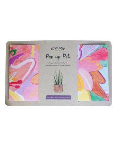 Pop Up Pot - Bloom (Medium) - Sow 'n Sow