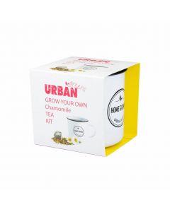 Grow Your Own Tea - Chamomile - Urban Greens