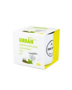 Grow Your Own Tea - Lemon Balm - Urban Greens
