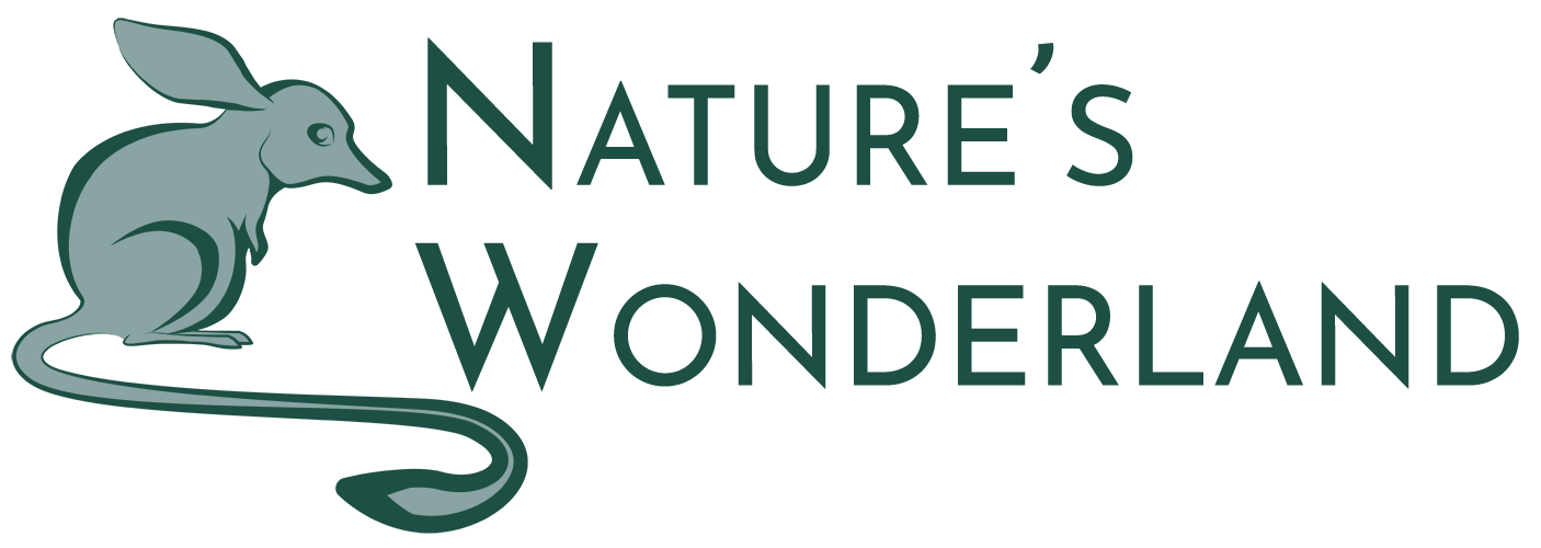Nature's Wonderland - Australia's Most Trusted for Healthy & Ethical Living